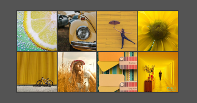 Collage featuring the colour yellow. For example: a cut lemon, a lady standing in a field of wheat and a yellow flower.